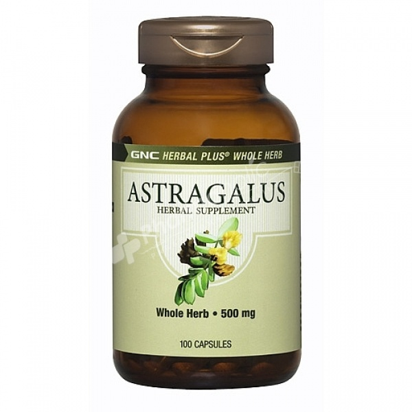 Supplements Gnc Herbal Plus Whole Herb Astragalus 500mg